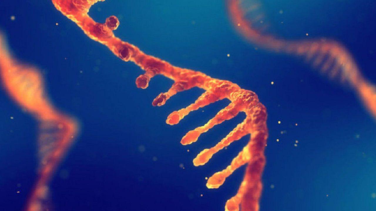 顛覆細胞遺傳學? 荷法兩研究證實「光學基因體圖譜」為次世代精準染色體異常檢測-環球生技月刊