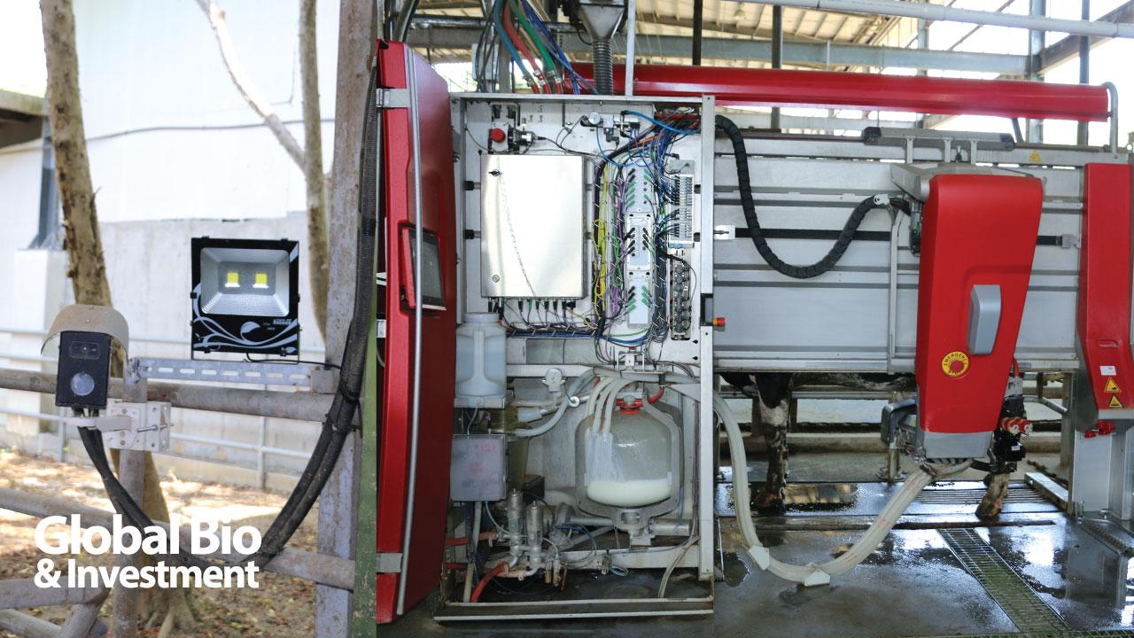 乳牛通過擠乳通道時,即時熱影像自動辨識系統即可辨識牛眼窩溫度。新竹分所首先試用擠乳機器人後,因成效與狀況良好,不少業者紛紛引進。